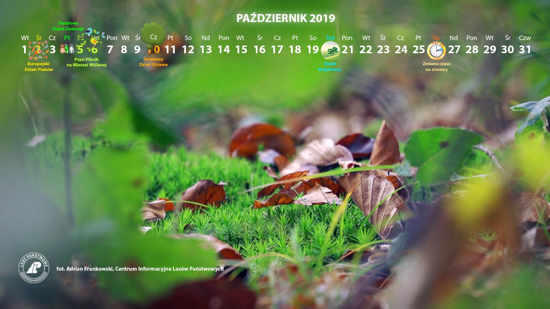 Kalendarz_październik_2019_1920x1080[1].jpg