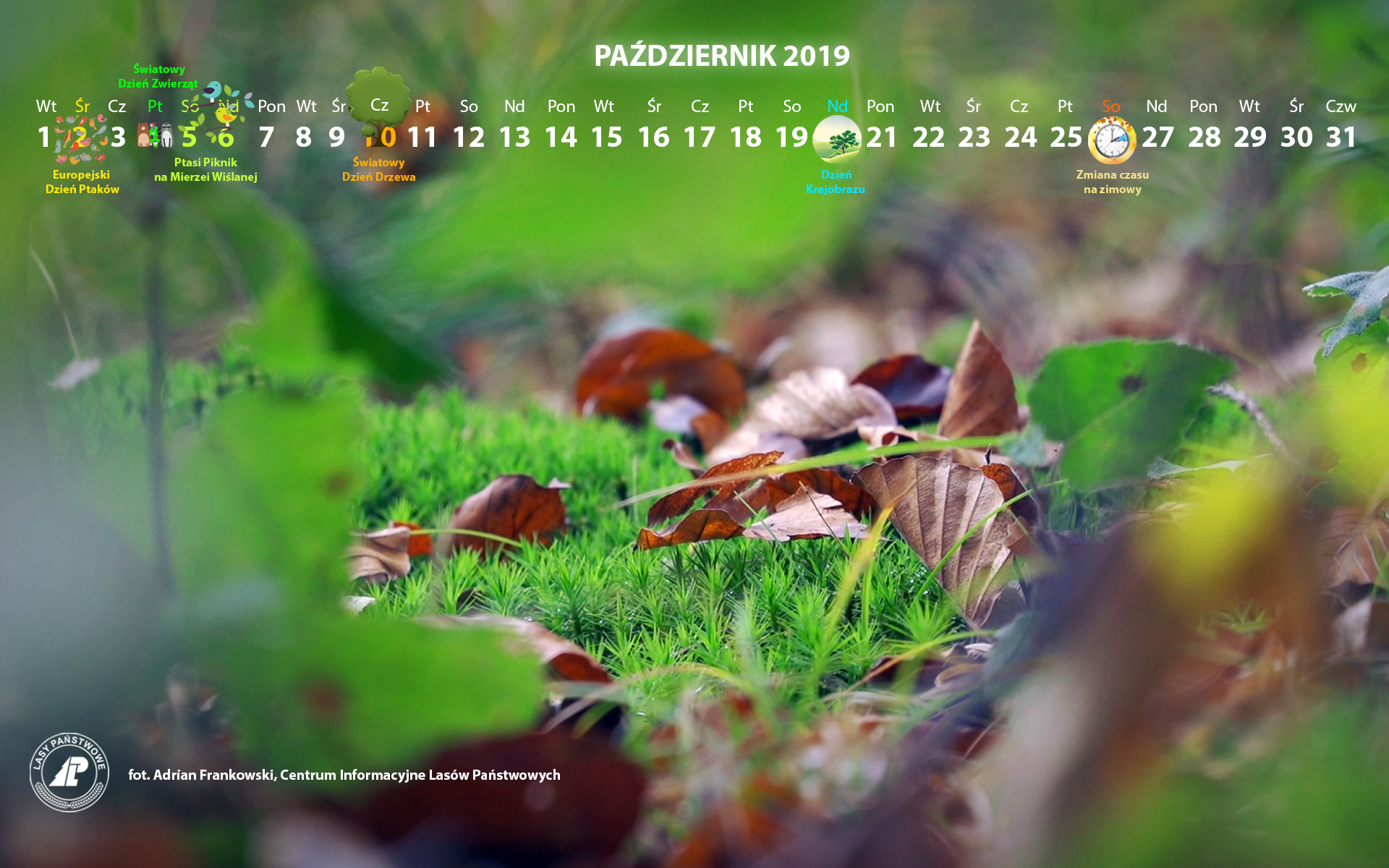 Kalendarz_październik_2019_1920x1200[1].jpg
