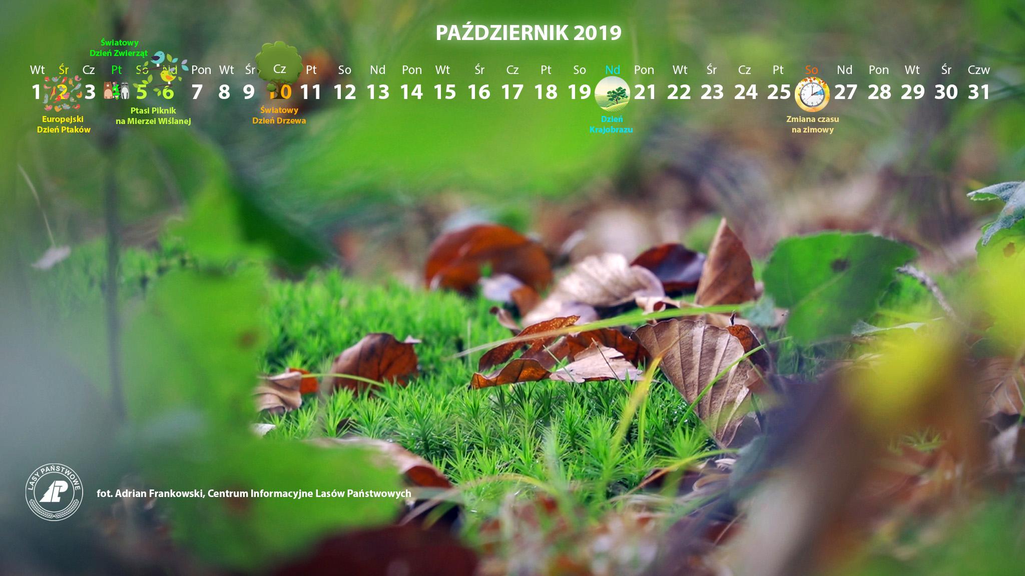 Kalendarz_październik_2019_2048x1152[1].jpg