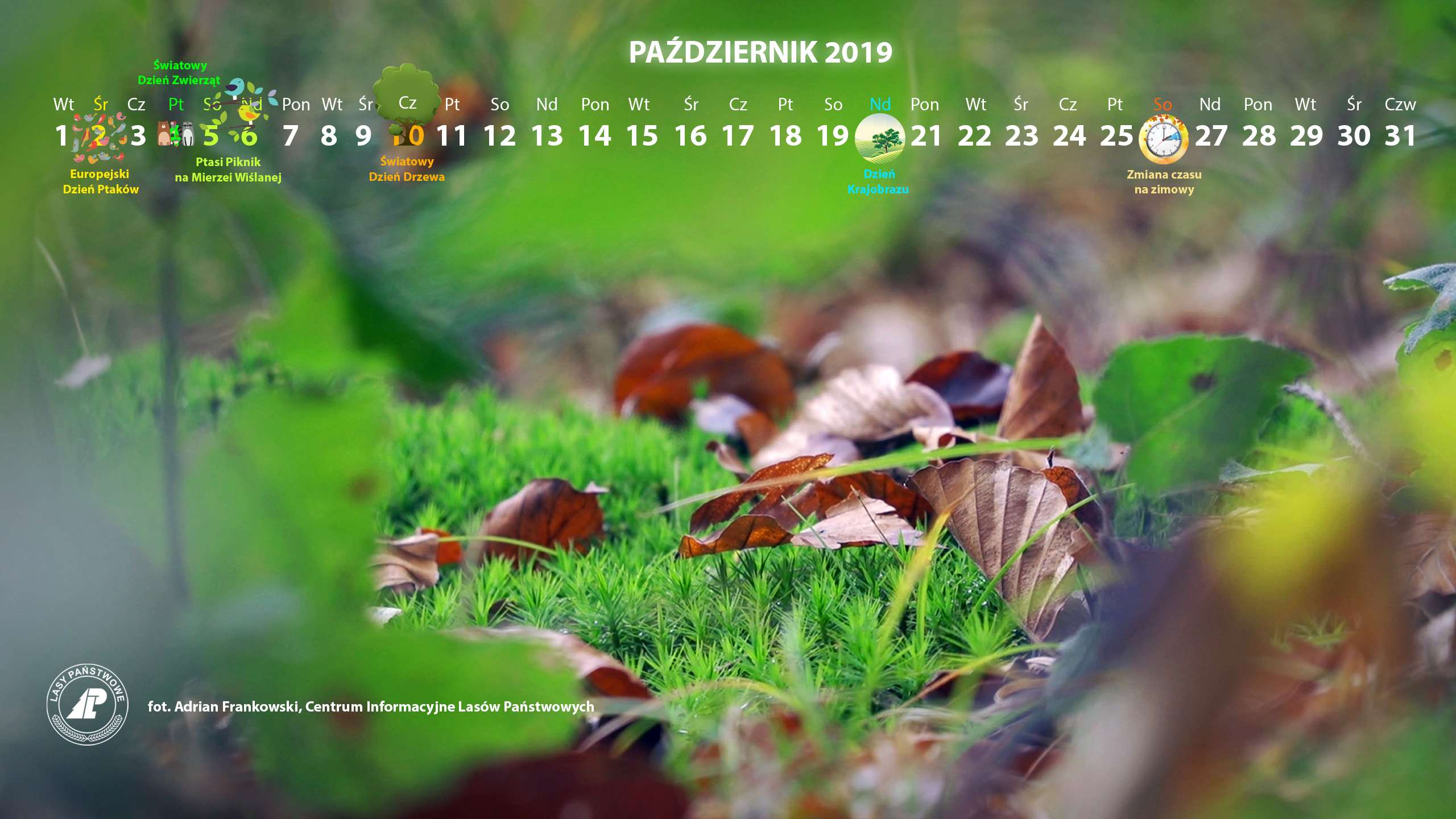 Kalendarz_październik_2019_2560x1440[1].jpg