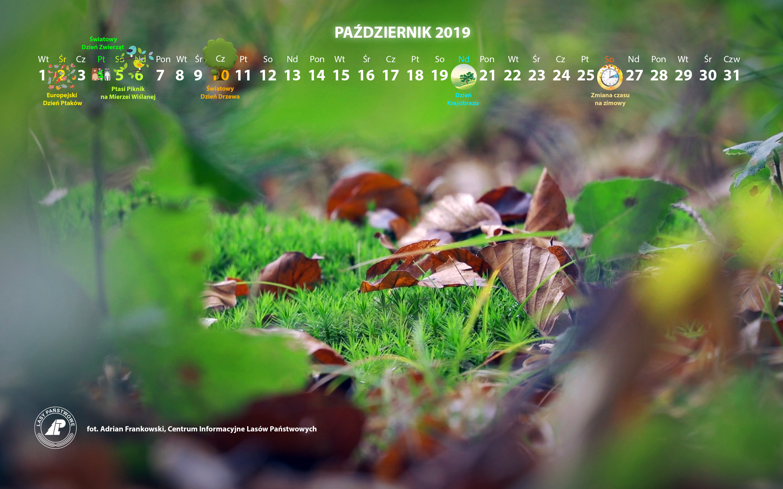 Kalendarz_październik_2019_2880x1800[1].jpg