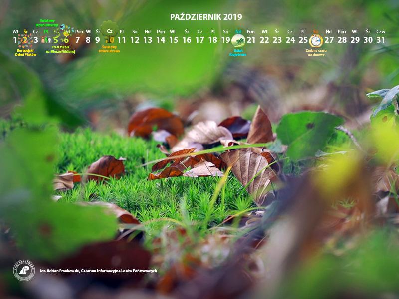 Kalendarz_październik_2019_800x600[1].jpg