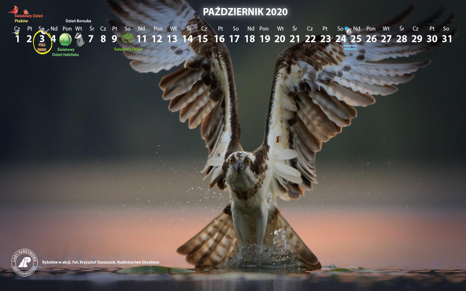 Kalendarz_1920X1200_PAŹDZIERNIK_2020[1].jpg