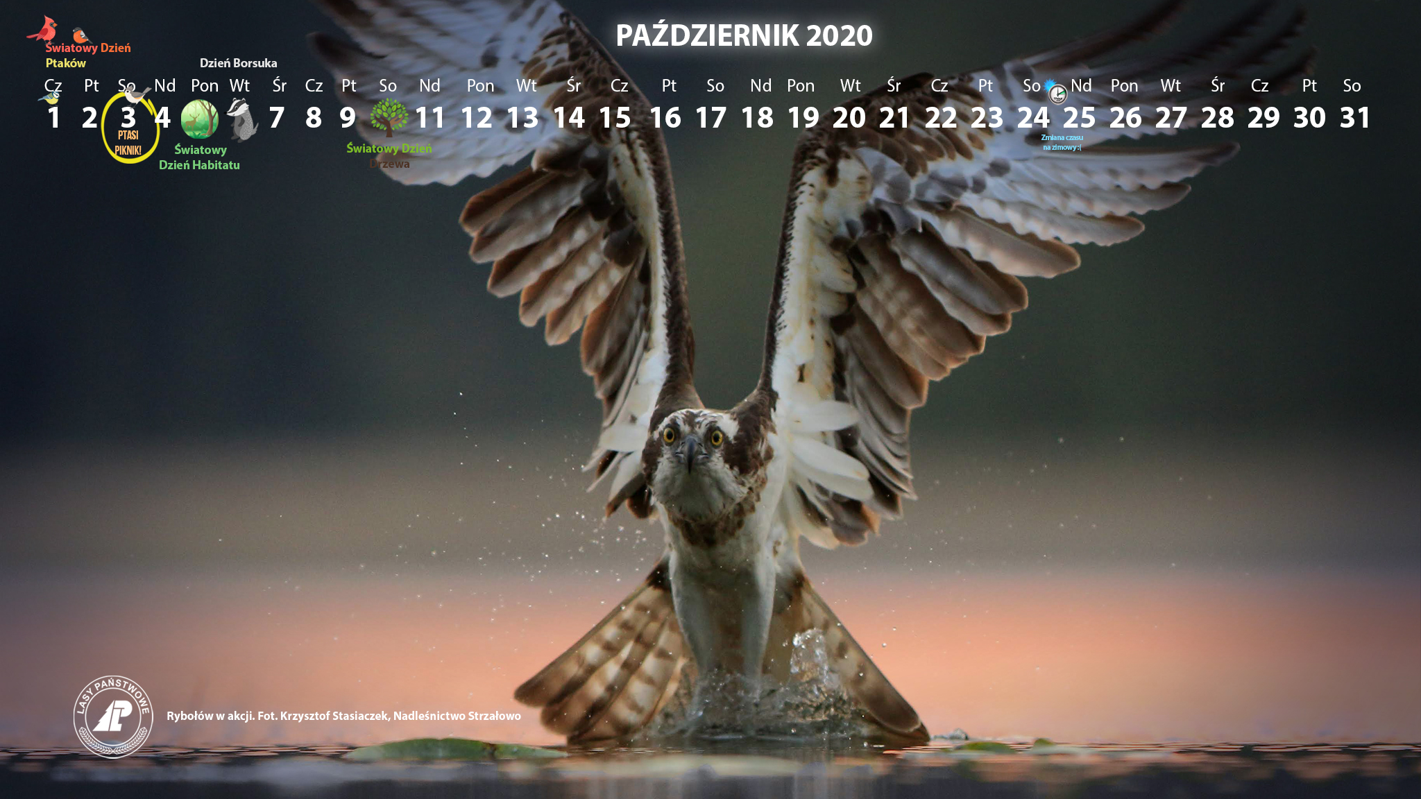 Kalendarz_2048X1152_PAŹDZIERNIK_2020[1].jpg