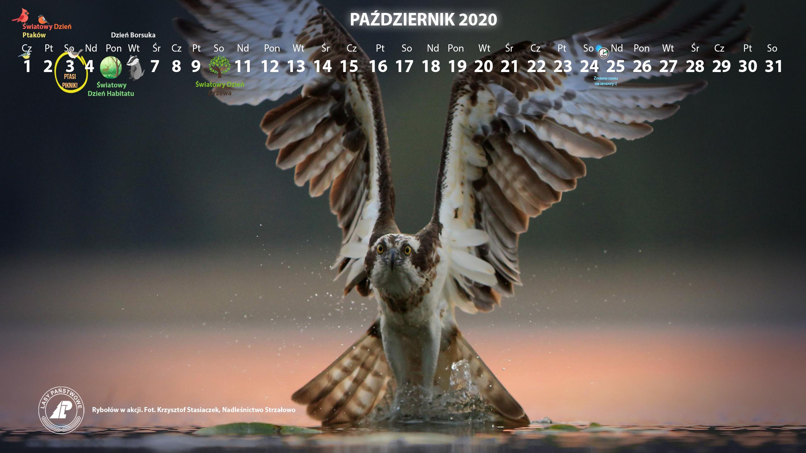 Kalendarz_2560X1440_PAŹDZIERNIK_2020[1].jpg