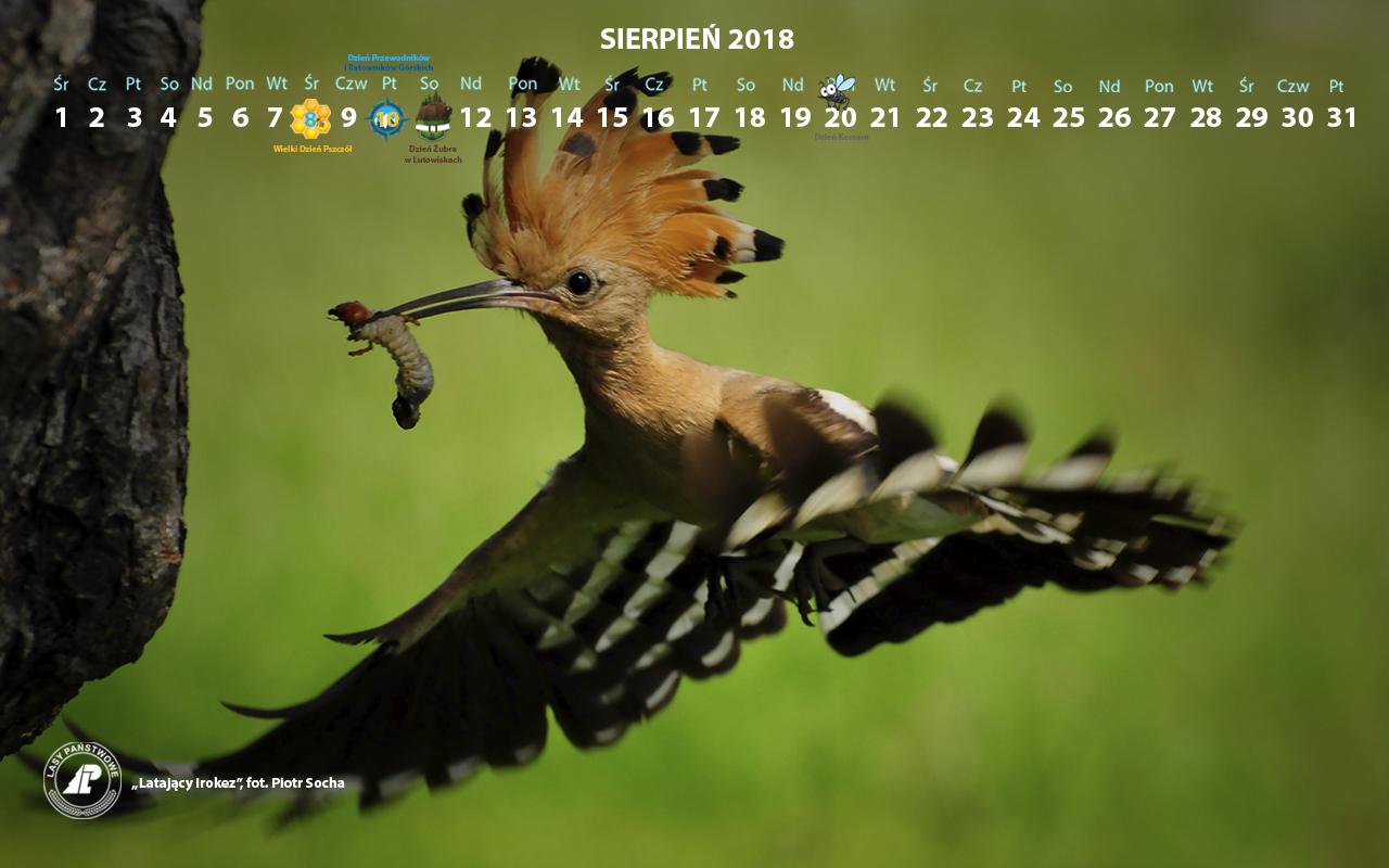 Kalendarz sierpień 2018 1280x800.jpg
