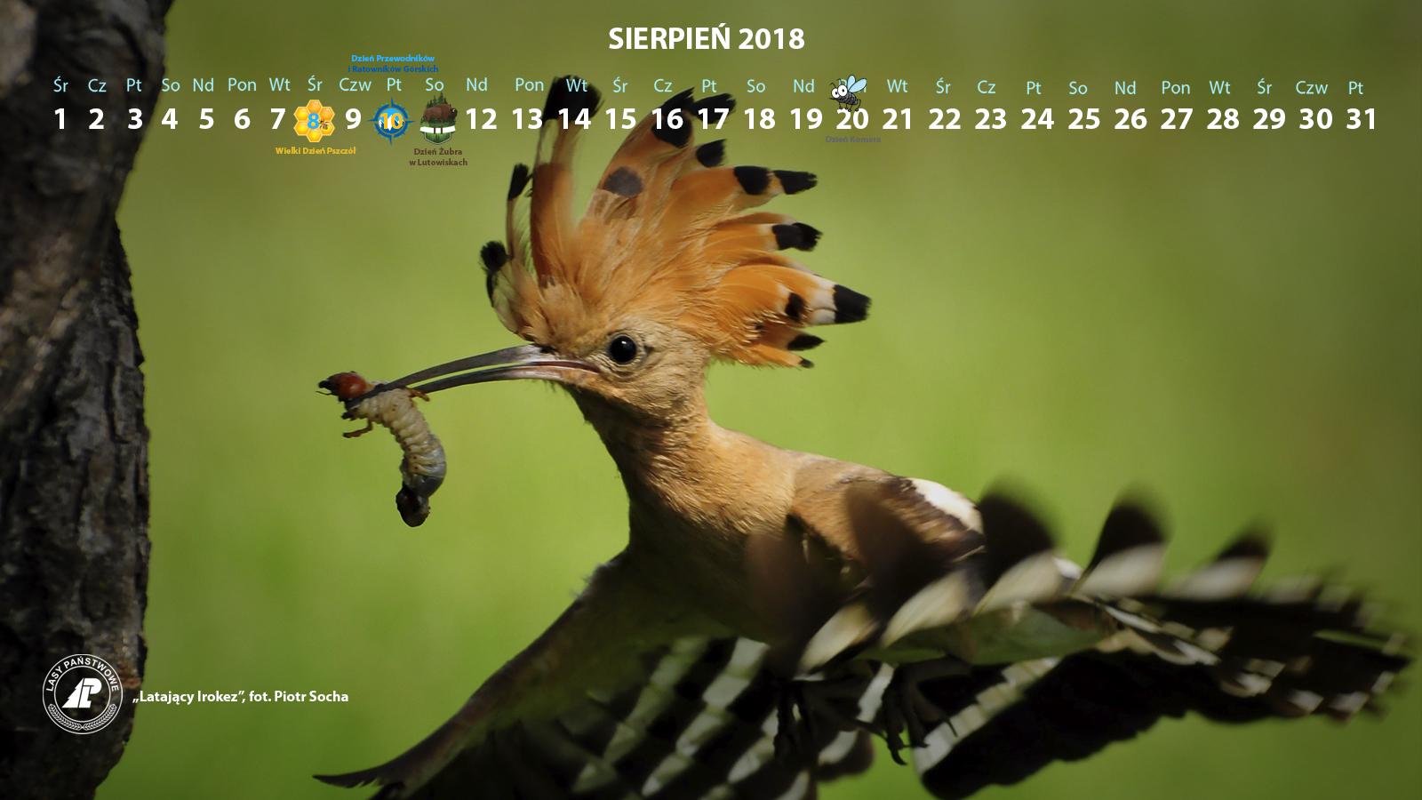 Kalendarz sierpień 2018 1600x900.jpg