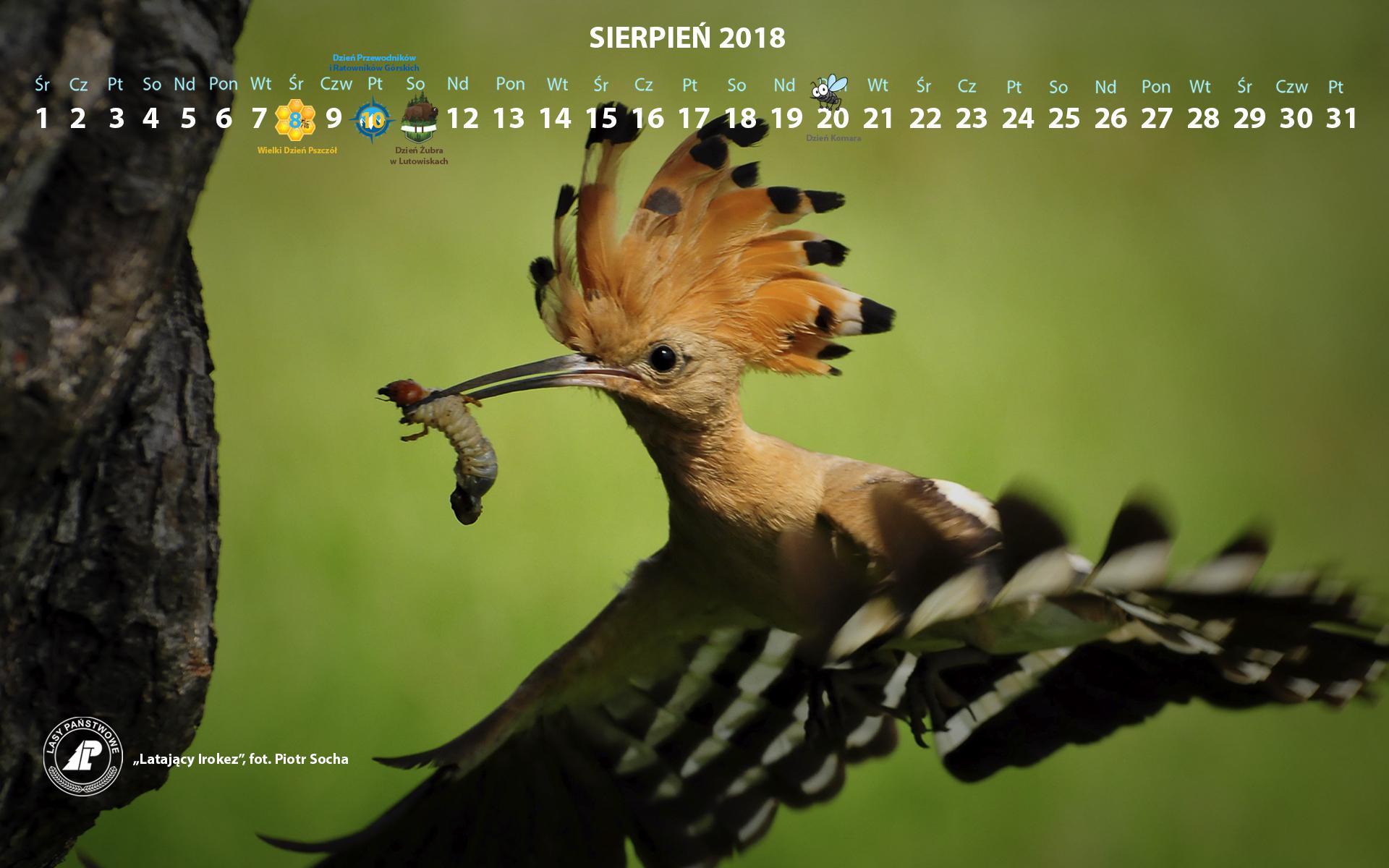 Kalendarz sierpień 2018 1920x1200.jpg