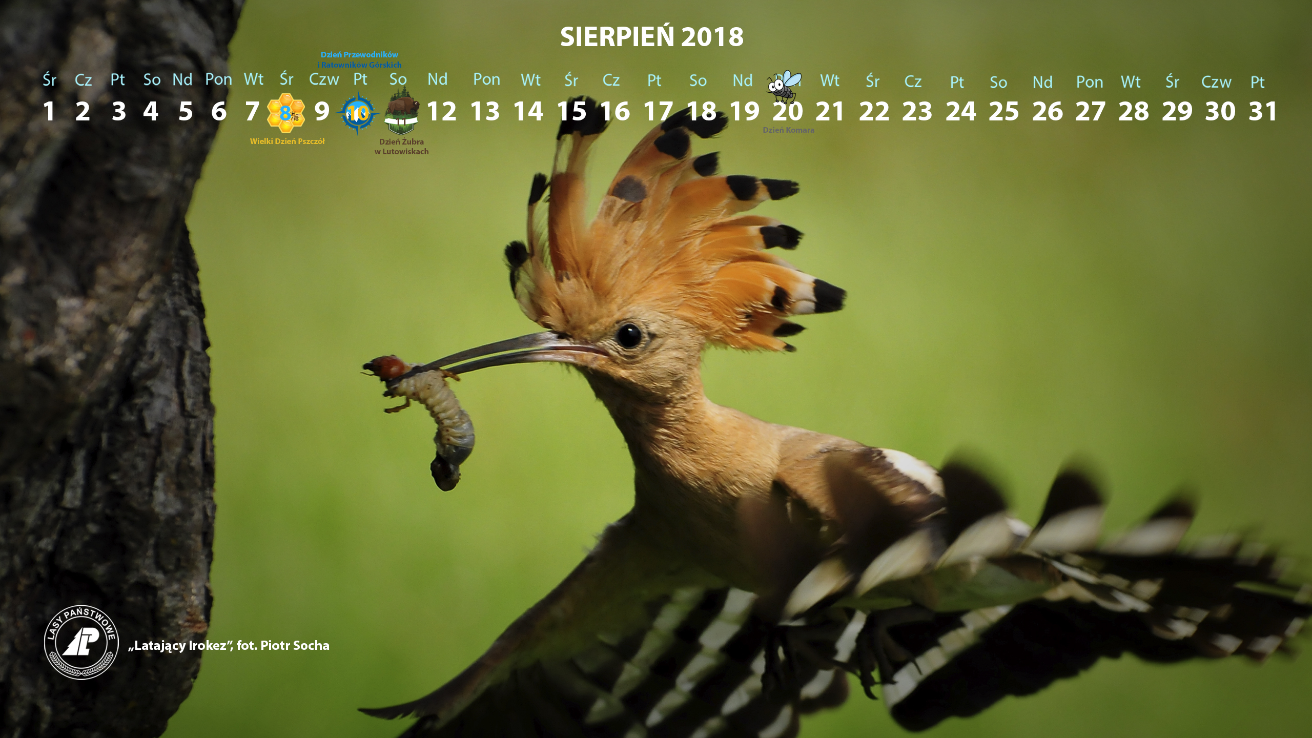 Kalendarz sierpień 2018 2560x1440.jpg