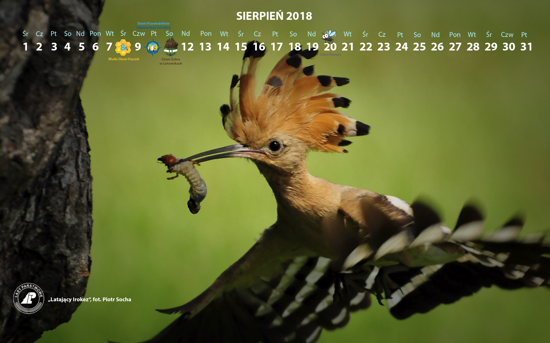 Kalendarz sierpień 2018 2880x1800.jpg