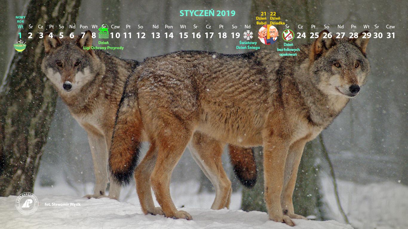 Kalendarz_styczeń_2019_1366x768[2].jpg