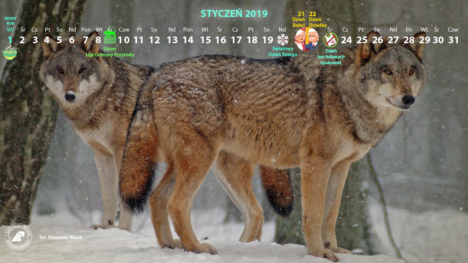 Kalendarz_styczeń_2019_1600x900[1].jpg