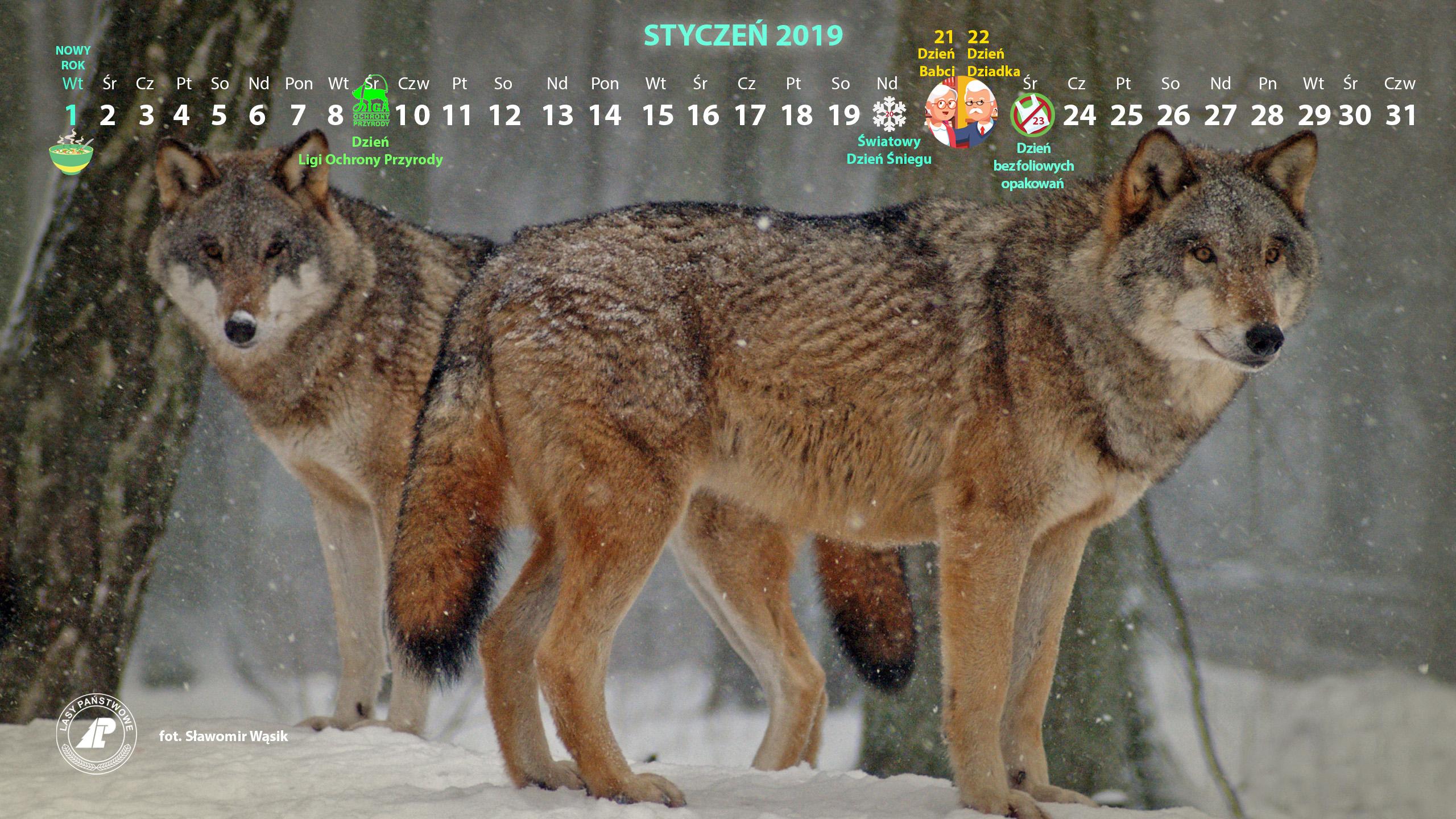 Kalendarz_styczeń_2019_2560x1440[1].jpg