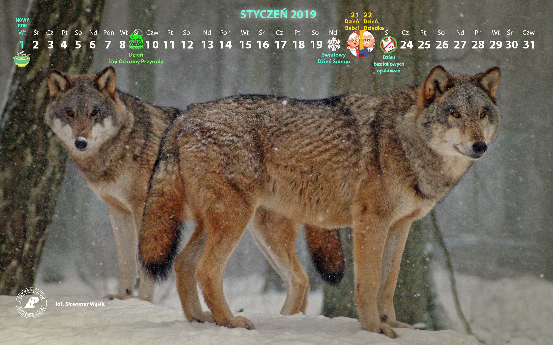 Kalendarz_styczeń_2019_2880x1800[1].jpg