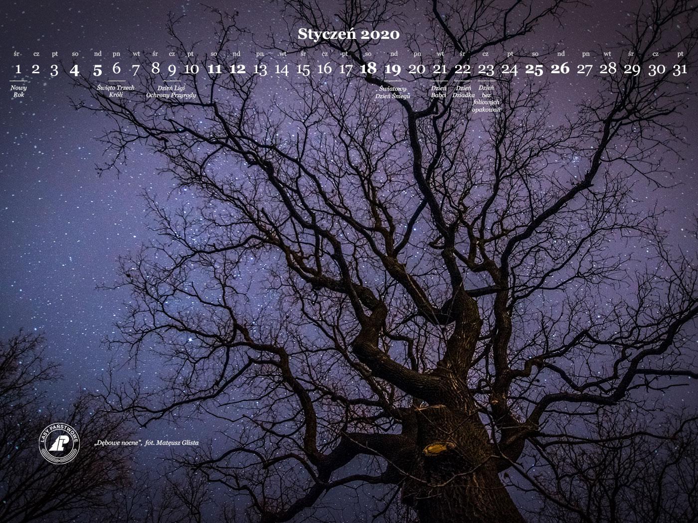 kalendarz_styczen_2020_1400x1050.jpg