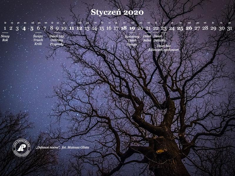 kalendarz_styczen_2020_800x600.jpg
