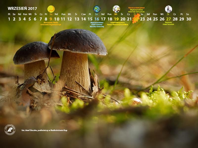 Kalendarz wrzesien 2017 800x600.jpg