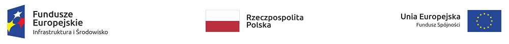 ciag znakow z flaga bez CKPS.png