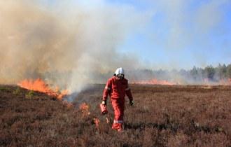 Raport z przebiegu wypalania wrzosowiska