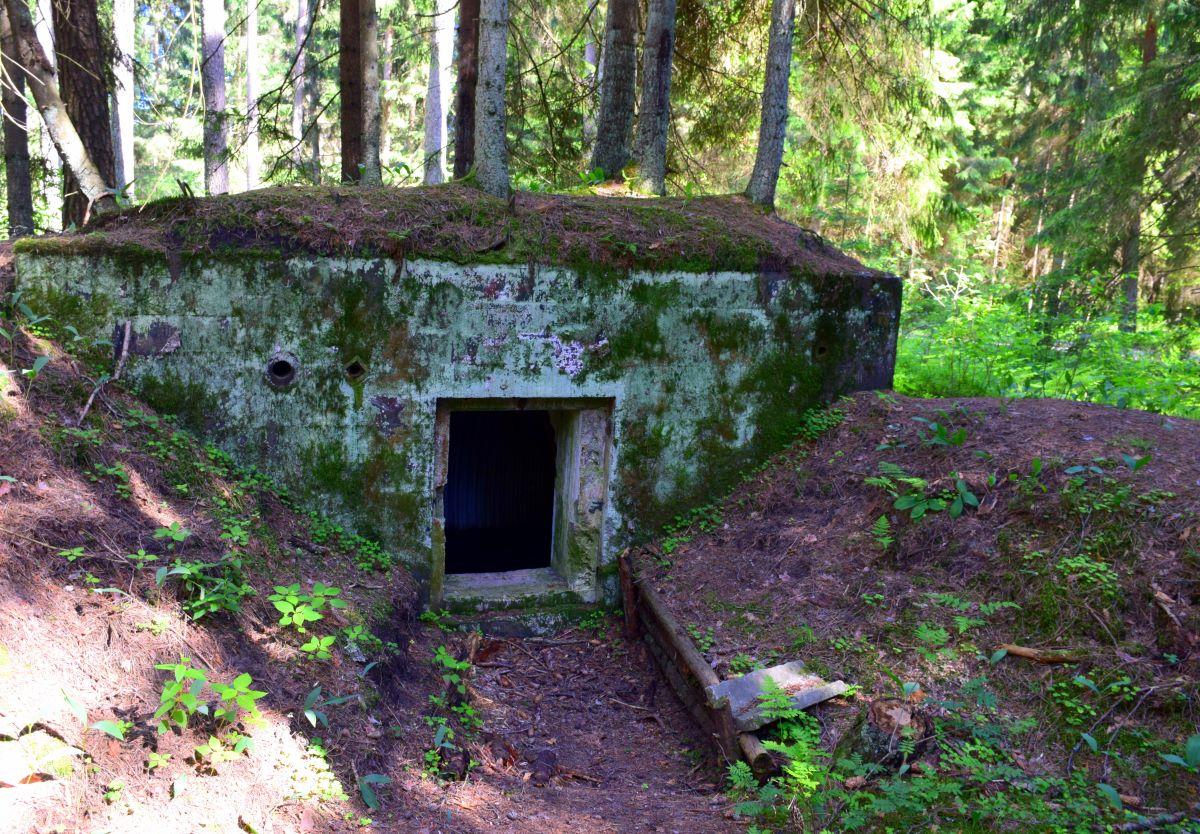 Bunkry shutterstock_1502638907 Rafal Miszkurka.jpg