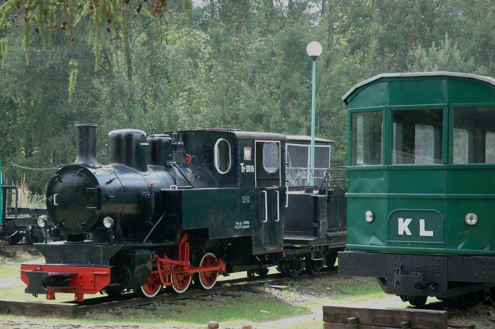 Lasy Janowskie - wystawa taboru leśnej kolei wąskotorowej. foto Andrzej Wediuki.jpg