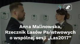 """Anna Malinowska, rzecznik prasowy LP, o wspólnej sesji """"Las 2017"""""""