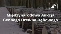 Aukcja drewna dębowego w Krotoszynie