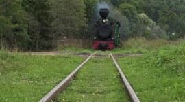 Bieszczadzka kolejka leśna - podróż sentymentalna