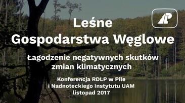 Leśne gospodarstwa węglowe szansą dla klimatu