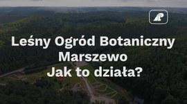 Leśny Ogród Botaniczny Marszewo. Jak to działa?