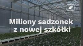 Miliony sadzonek z nowej szkółki
