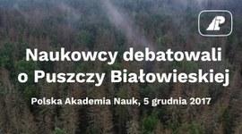 Naukowcy debatowali o Puszczy Białowieskiej