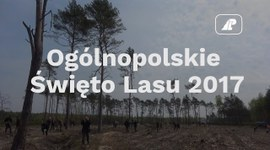 Ogólnopolskie Święto Lasu 2017