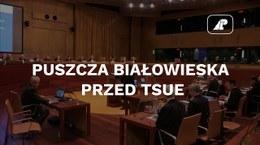 Puszcza Białowieska przed TSUE