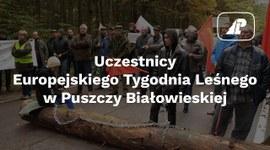 Uczestnicy Europejskiego Tygodnia Leśnego w Puszczy Białowieskiej