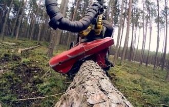 W służbie lasom 7 - drewno